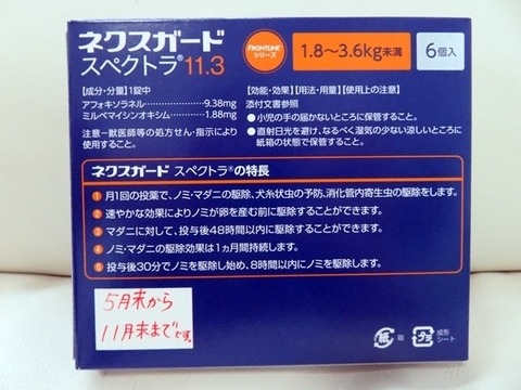 IMG_0604-1.JPG
