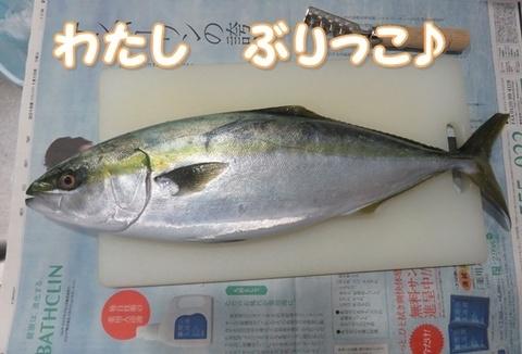 IMG_5580-2.JPG
