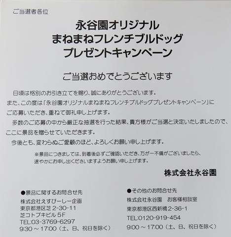 IMG_6592-1.JPG